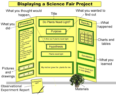 6th grade science fair research paper guidelines